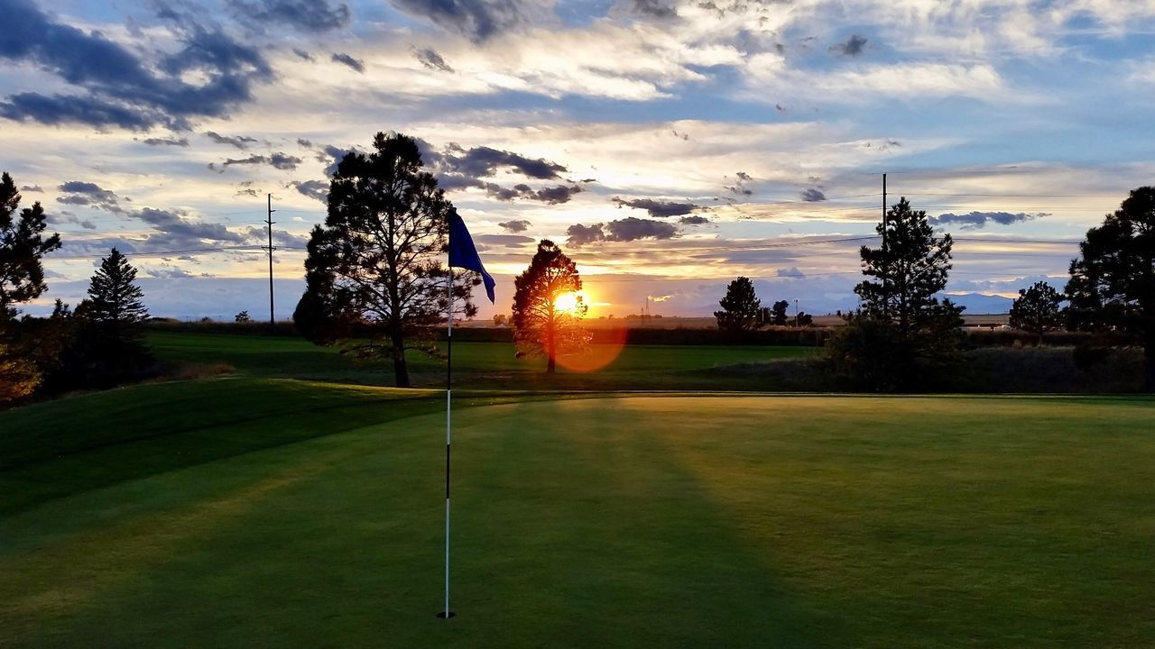 tree, sunset, sky, cloud - sky, grass, nature, beauty in nature, golf, golf course, scenics, sun, no people, tranquility, outdoors, sport, green - golf course, day