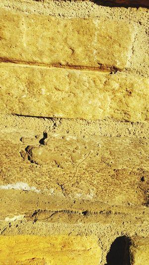 Withaeyeforeyeem Structures & Lines Stocco Drystonewall Arizona Myshoppicoftheday Whats Up EyeEm Fountainhills Brick Ilovestones