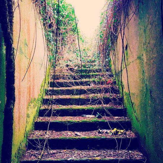 The Secret Spaces WW2 Underground Bunker