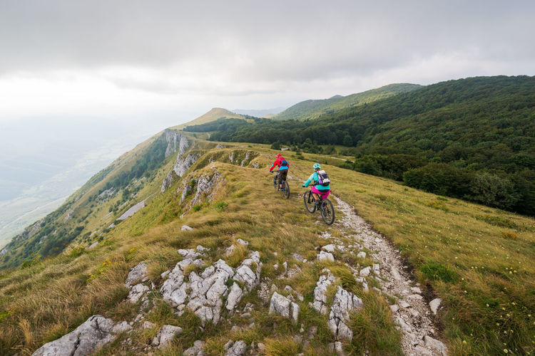 Rear view of people riding bicycles on mountain