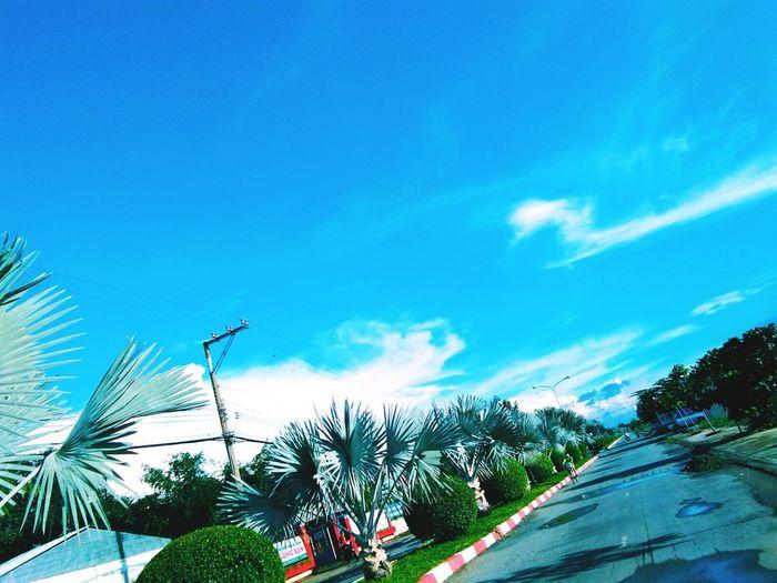 Đường đi học