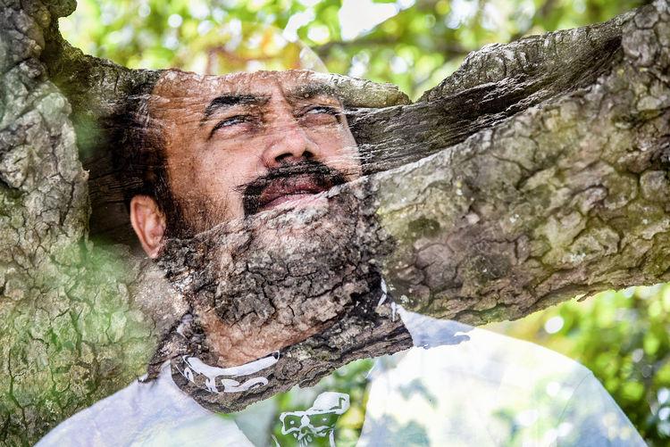 Portrait of man against tree trunk