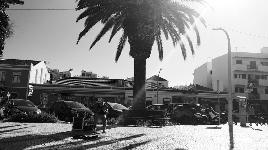 People by palm trees and buildings in city against sky
