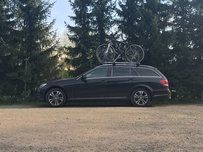 Bicycles on car roof against trees in forest