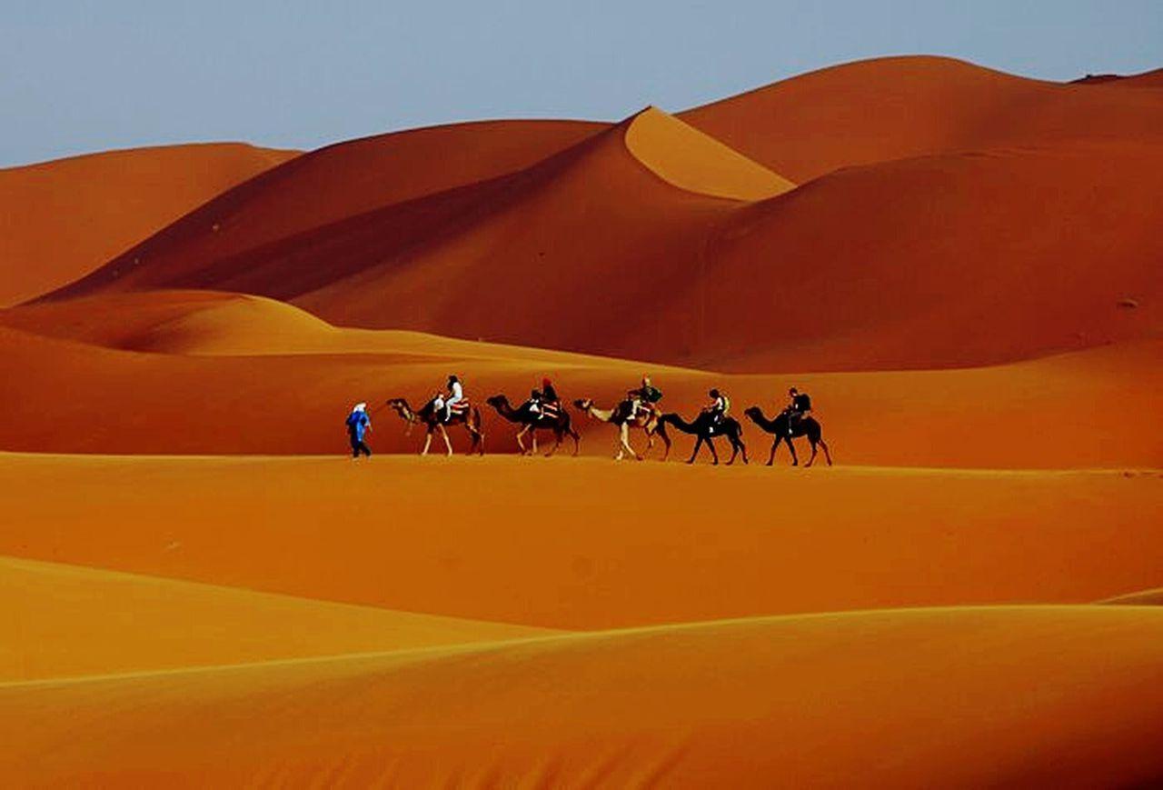 Merzougadeserts Sable 🌴 Saharadesert Sahara Desert Beauty Desert