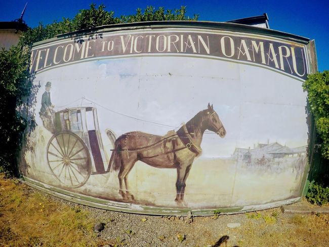 City Day Horse Horse And Carriage Mammal New Zealand Architecture No People Oamaru Old School Old-fashioned Outdoors Retro Text Train Station