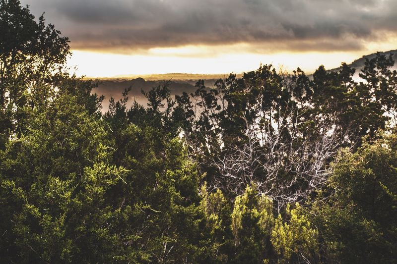 If i could i would forget everything and move to the country. In Kerrville Texas Sunset Clouds Trees