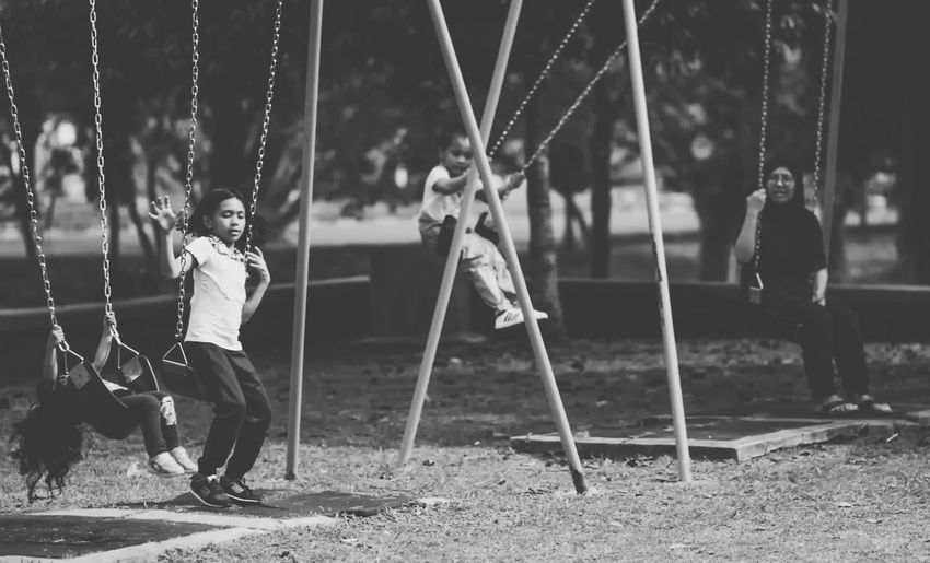 People Playing On Swings In Park