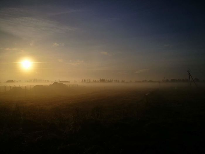 into the morning #Morning #Sunrise #fog Field Landscape Fog Agriculture Rural Scene No People Outdoors EyeEmNewHere