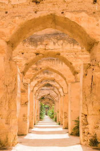 Ancient Ancient Civilization Arcade Arch Archaeology Architectural Column Architecture Building Built Structure Ceiling Corridor Day Diminishing Perspective History Nature No People Old Outdoors Ruined Solid Stone Material The Past Travel Destinations