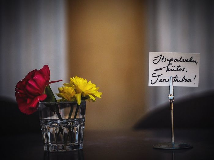 Close-up Depth Of Field Blurred Background Flowers Table Tabletop Fine Art Photography Finland Helsinki Helsinki,finland Red Yellow Sign Sayings Shootermag Street Street Photography Streetphotography Sightseeing Travel Photography Olympus Epl7 In Front Of Me Olympus倶楽部 OlympusPEN Olympus
