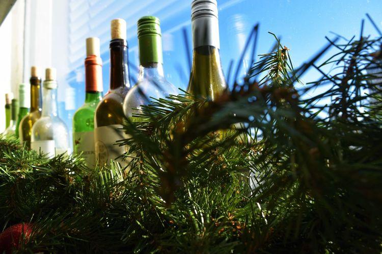 Bottle Decor Drinkiing Garland Decor Green Green Color Paris Wine Wine Bottles