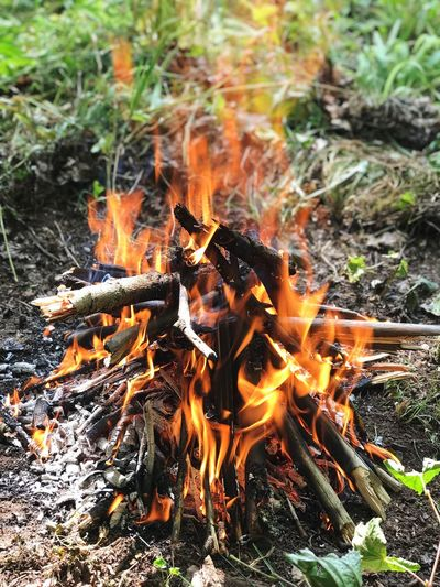 Burning Flame Fire Fire - Natural Phenomenon Nature Plant Heat - Temperature Land No People Field Motion