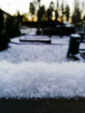 Some snow Outdoors Nature Close-up Day Wintertime Snow ❄ No People Snowday Cold Temperature Cold Winter ❄⛄ Cold Weather Winter Winter2016