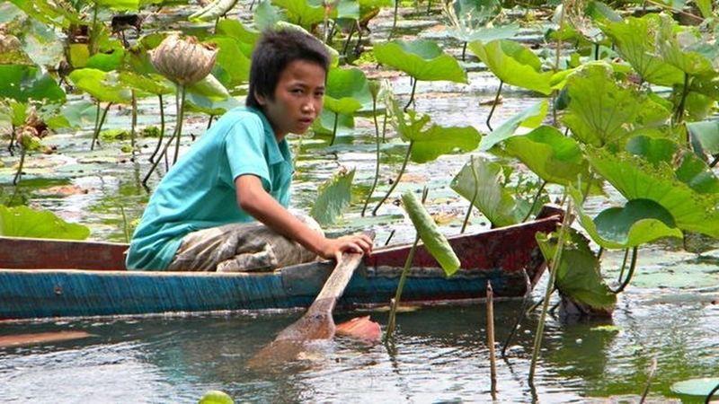 Vietnamese Rowing Rowingboat Lake Waterlily Vietnam