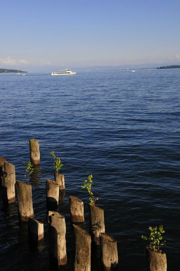 See Bodensee Wasser Natur Weite Water Sea Riverside Beach Lake Buhne Holzbuhne Buhnen Holzbuhnen Pflöcke Holzpflöcke Sommer Sommerzeit Summer Sea Water Nature Beauty In Nature No People Wood - Material Horizon Over Water Tranquil Scene Tranquility Sky Outdoors