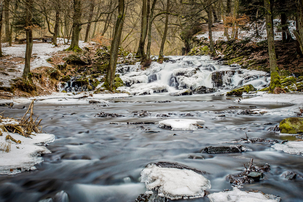 water, flowing water, tree, motion, forest, beauty in nature, no people, plant, rock, land, flowing, scenics - nature, nature, solid, long exposure, downloading, rock - object, day, blurred motion, stream - flowing water, outdoors