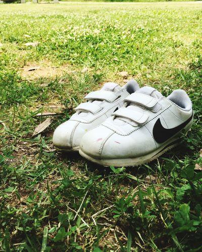 조카님 . . . 니케 #철스타일 #아이폰 #나들이 #조카님 #신발#NIKE #CHEOLstyle #iPhone6s Grass Shoe Field Nature Day No People Plant