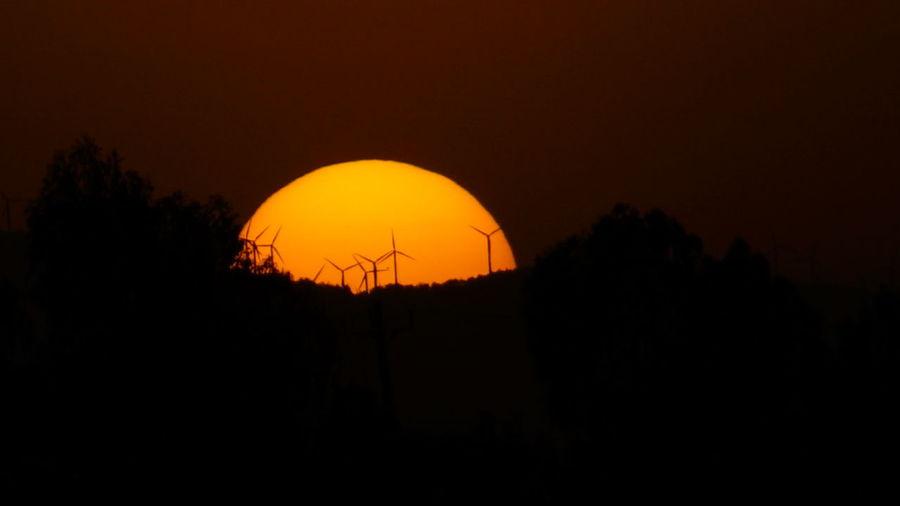 Sunset silhouette Sun Astronomy Tree Sunset Silhouette Astrology Sign Sky
