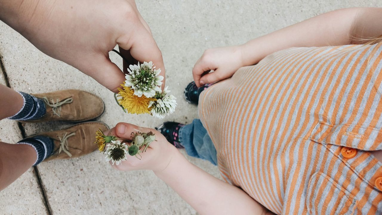 High angle view of boy and person holding flowers at street