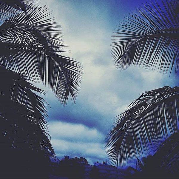 Breathtaking. Sky Clouds Nature BREEZY Trelltalebangalore Photoarena_nature Fiftyshades_of_nature Myblr Photooftheday Instadaily