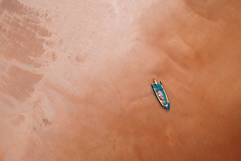Animal Animals In The Wild Beach Beige Brown Day Directly Above High Angle View Land Machinery Mode Of Transportation Nature No People Outdoors Sand Sunlight Transportation Water