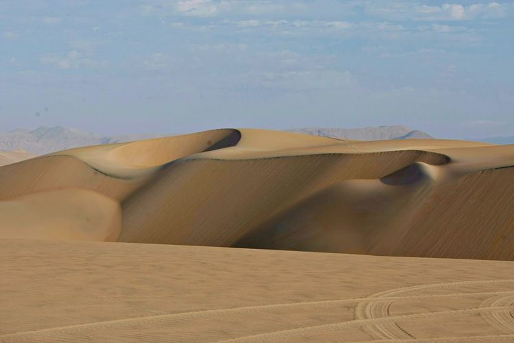 Sand Sand Dune
