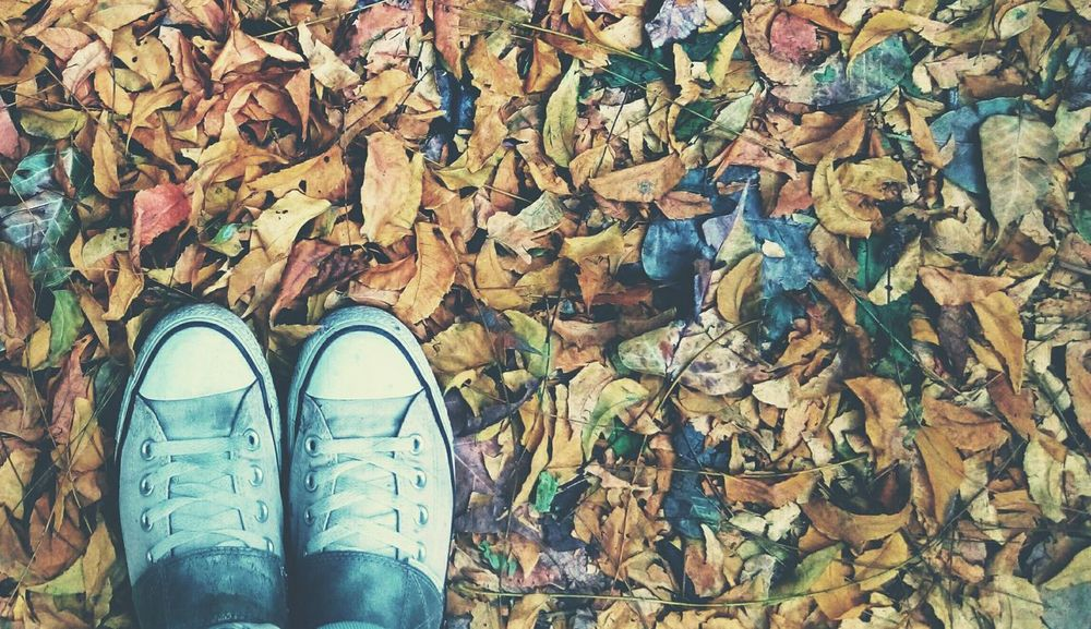 Nature One Person Personal Perspective Standing Low Section Outdoors Leaves Autumn🍁🍁🍁 Autumn Leaves Day One Man Only Lifestyles Shoe Canvas Shoe India_gram Indianphotographer Htcphotography HTC_photography Eyemphotography HTC Desire EYE EyeEmshots Eyem Best Shots Autumn Pixelsphotography