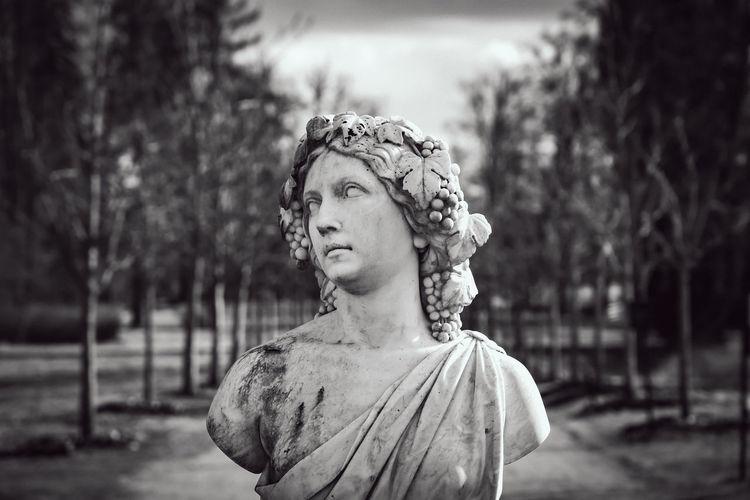 Portrait of man looking away