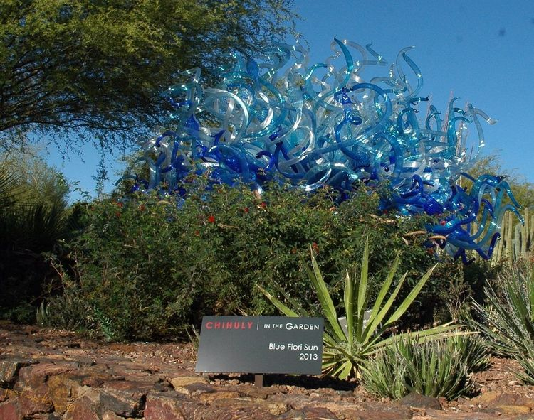 I visited the Desert Botanical Garden today in Phoenix ... They currently have a special exhibit throughout the garden by a talented artist named Chihuly ... and the exhibit aptly named Chihuly | In The Garden