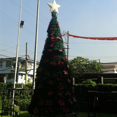 The Christmass Feels in NU Nuartapp BeautifulplacesinNu Sirlaong Com151