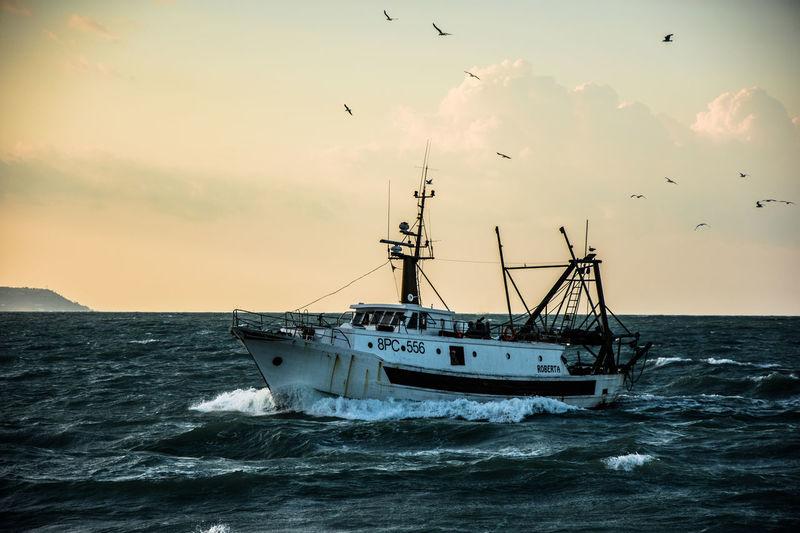 Adriatic Sea Fishing Boat Fishing Industry Italy Mode Of Transportation Outdoors Sea Sky Sunset Transportation Water The Great Outdoors - 2018 EyeEm Awards The Traveler - 2018 EyeEm Awards The Street Photographer - 2018 EyeEm Awards