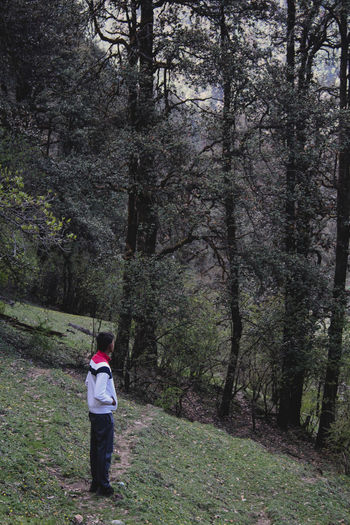 Side view of man standing against trees in forest