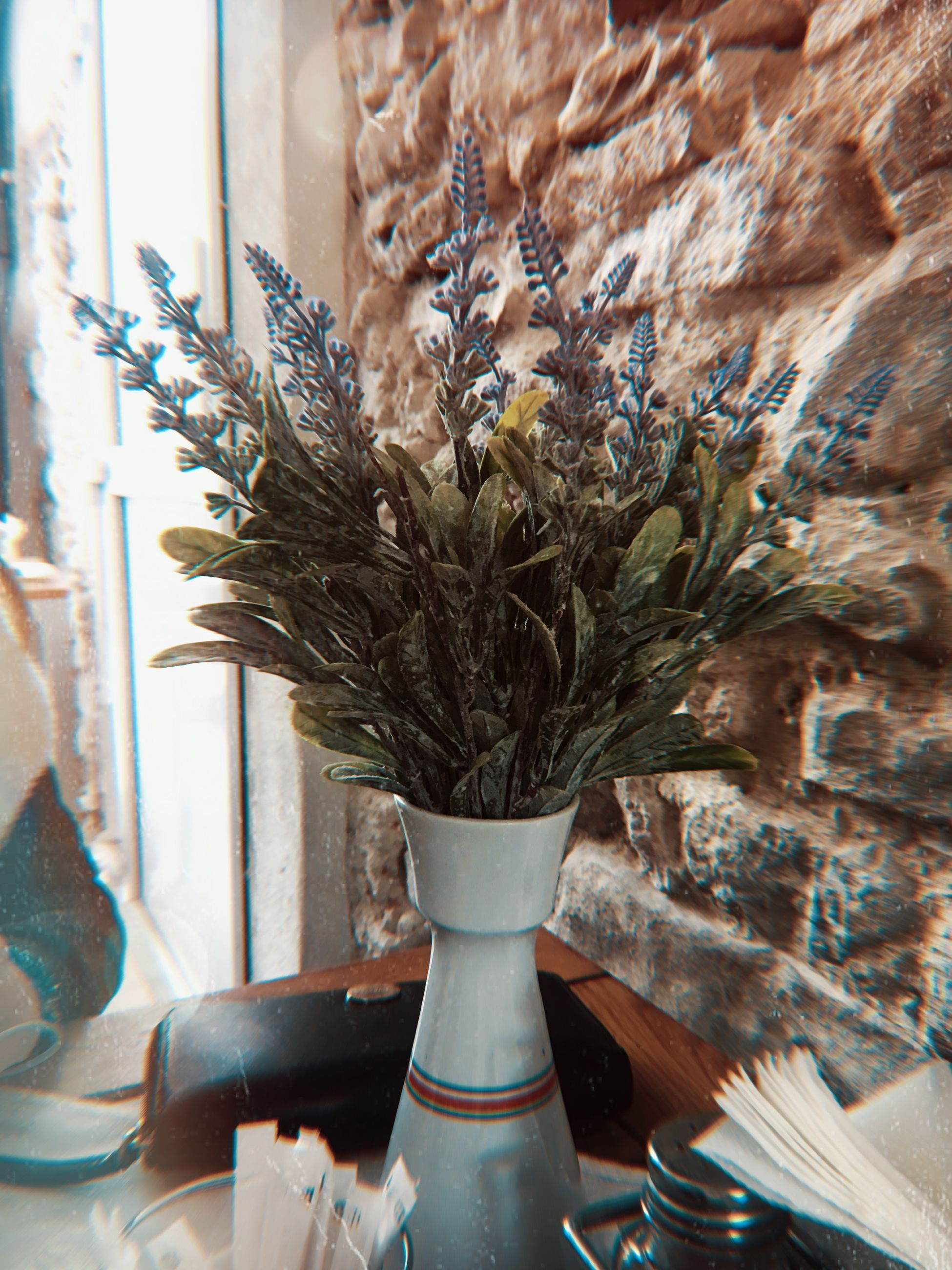 plant, no people, indoors, flowering plant, vase, flower, nature, close-up, day, growth, potted plant, window, beauty in nature, vulnerability, decoration, fragility, selective focus, flower arrangement, flower head, houseplant, bouquet