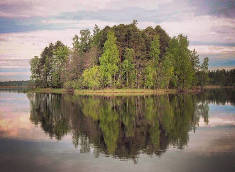 Summer Island Reflection Water Lake Outdoors Beauty In Nature No People Naturebeauty Finnish Nature Landscape_photography Naturelovers Nature Photography Photographer Something Beautiful Colourful Photography Summer Landscape Reflection