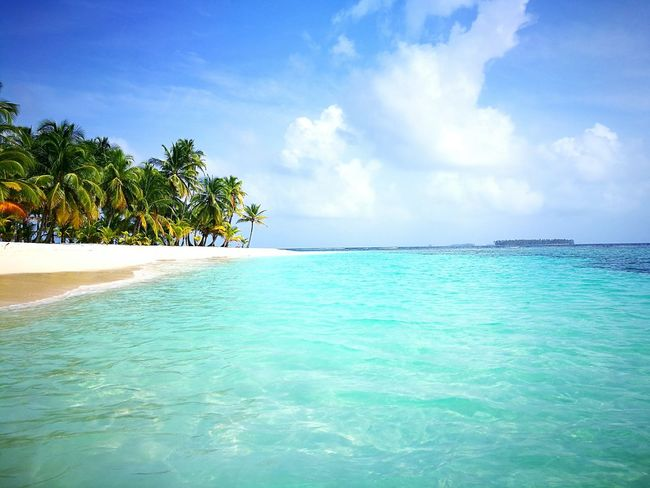 San Blas San Blass Panama Water Travel Beauty Relaxation Beach Sea Blue Beauty In Nature Palm Tree Nature Island Archipelagos Travel Destinations No People Colorful Simply Beautiful San Blas Island Colors Of Nature