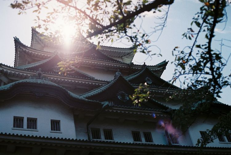 Nagoya Castle Autumn Backlight Close Up Cultures Design Film Film Photography Fuji Fuji Superia X-Tra 400 Fujifilm History Japan Light Low Angle View Nagoya Castle Pattern Religion Roof Shadow Spirituality Sunlight Tradition Traditional