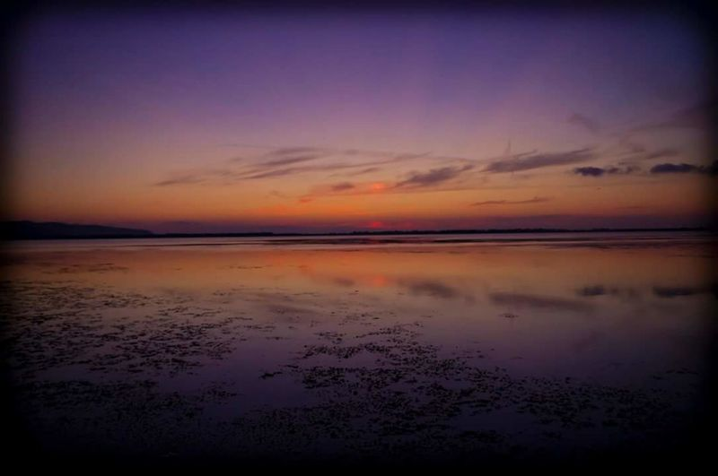 Sunset Reflection Dramatic Sky Beauty In Nature Water Scenics Sky Tranquility Beach Sea Nature Cloud - Sky Tranquil Scene Pink Color Landscape Outdoors Dusk Horizon Over Water Sun No People Italy Tuscany Tuscany Coast