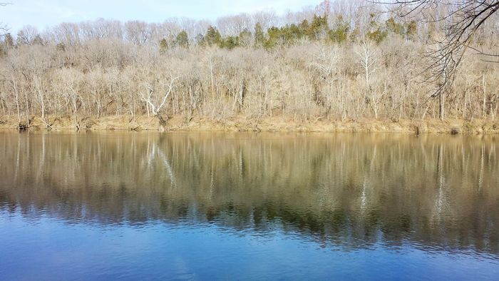 So Much Beauty In Something So Not In Bloom Peaceful River Trip Silence
