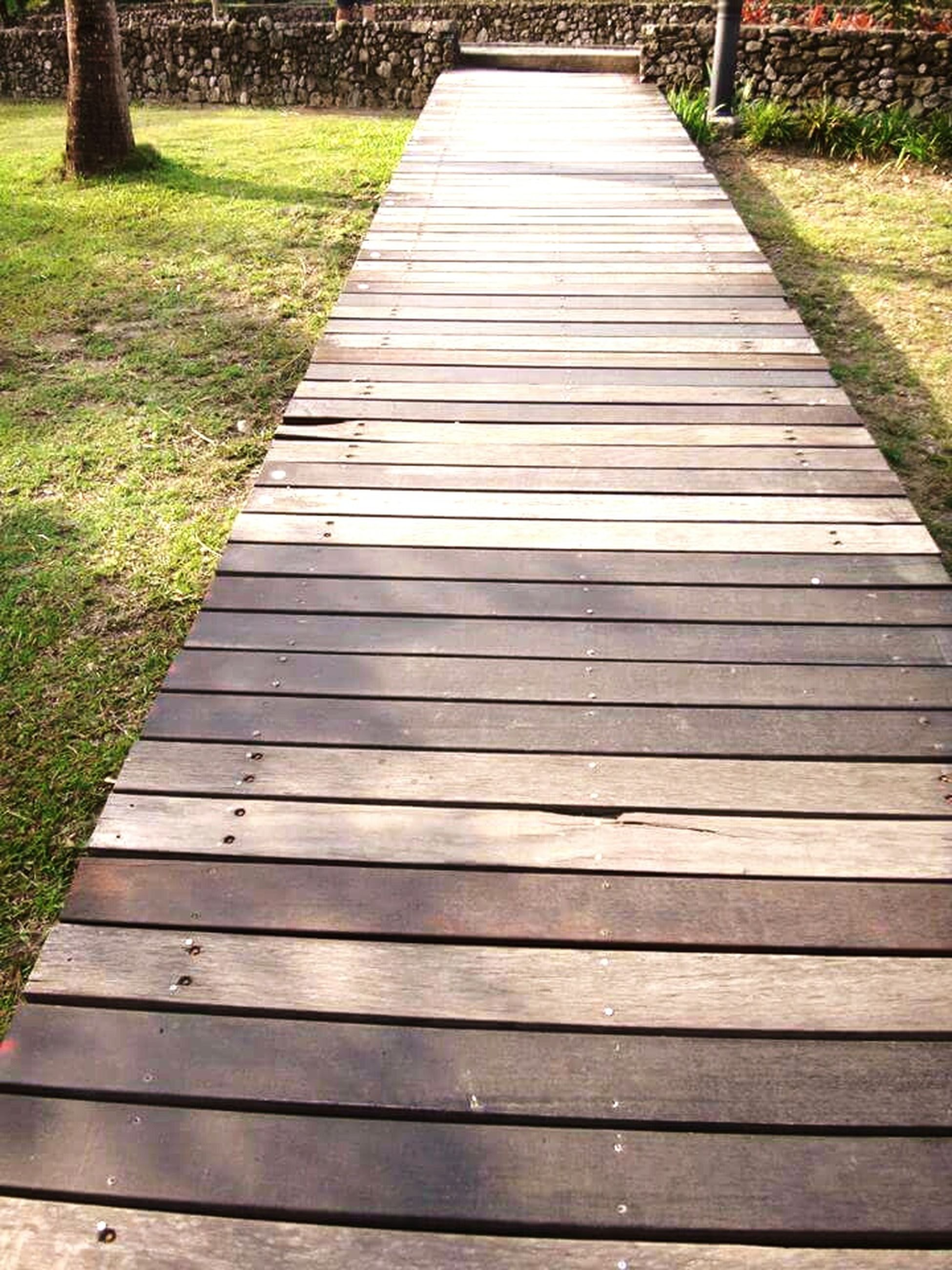 wood - material, grass, wooden, wood, boardwalk, the way forward, field, nature, plank, park - man made space, high angle view, green color, outdoors, tranquility, growth, day, bench, empty, no people, pattern