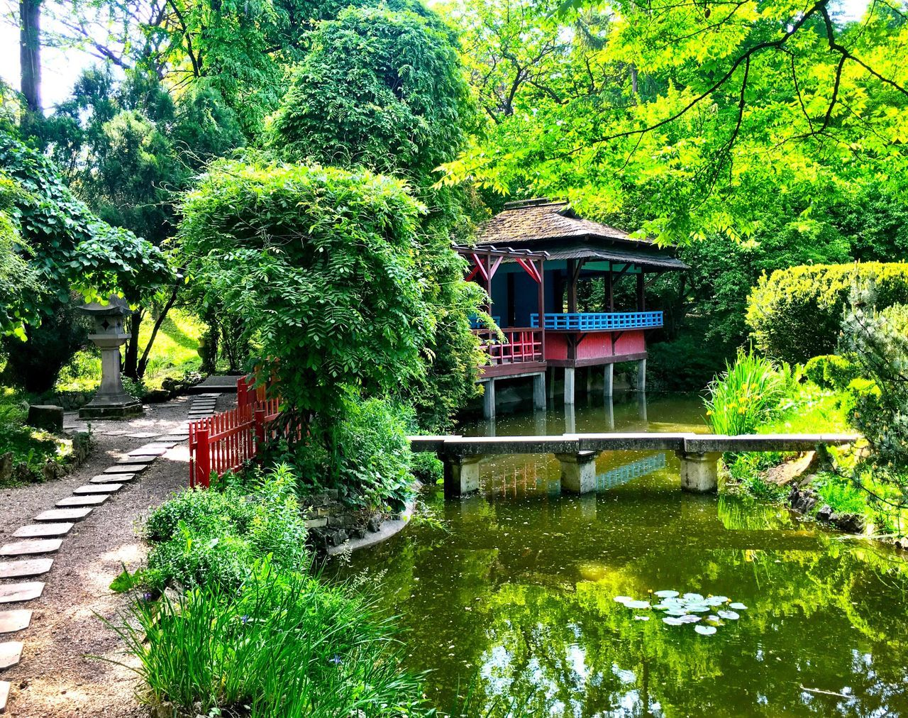 tree, nature, built structure, outdoors, growth, architecture, lake, beauty in nature, green color, water, building exterior, no people, plant, day