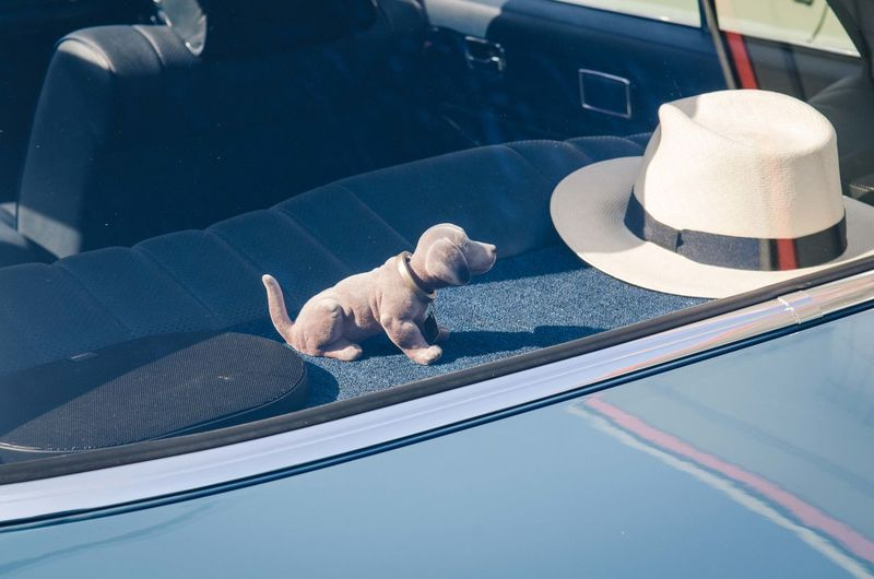 High angle view of toy dog and hat in car during sunny day