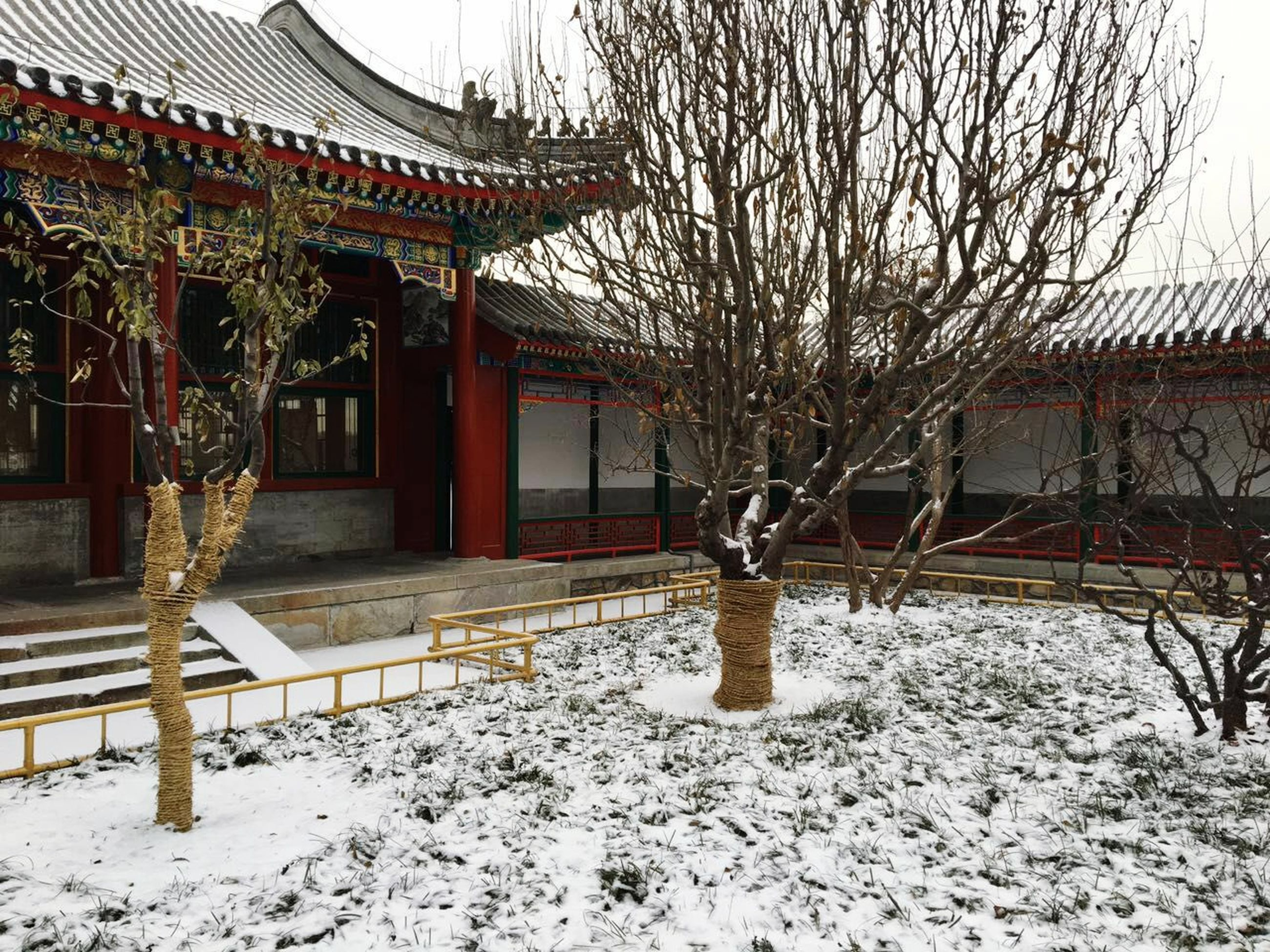 built structure, architecture, building exterior, snow, winter, cold temperature, house, bare tree, tree, season, residential structure, covering, day, fence, outdoors, no people, wood - material, nature, branch, residential building