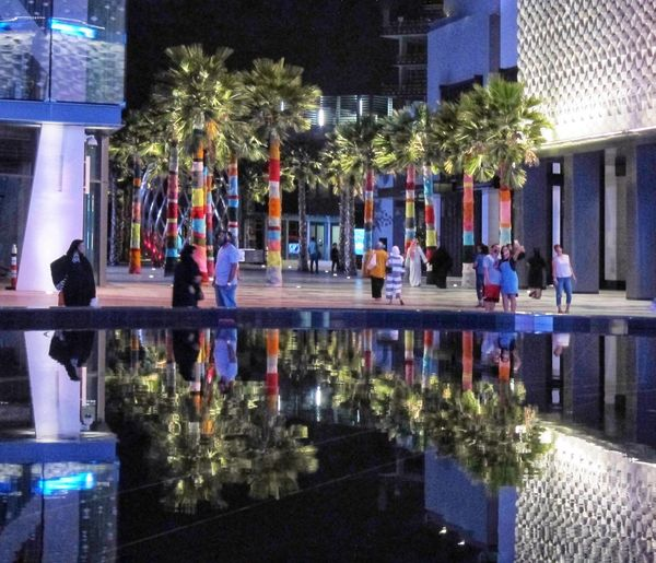 Dubai Leisure Dubai Tourism Palm Trees Palm Tree Reflection Reflection Photography Tree Building Exterior Illuminated Built Structure Night Reflection Architecture Group Of People Decoration Outdoors
