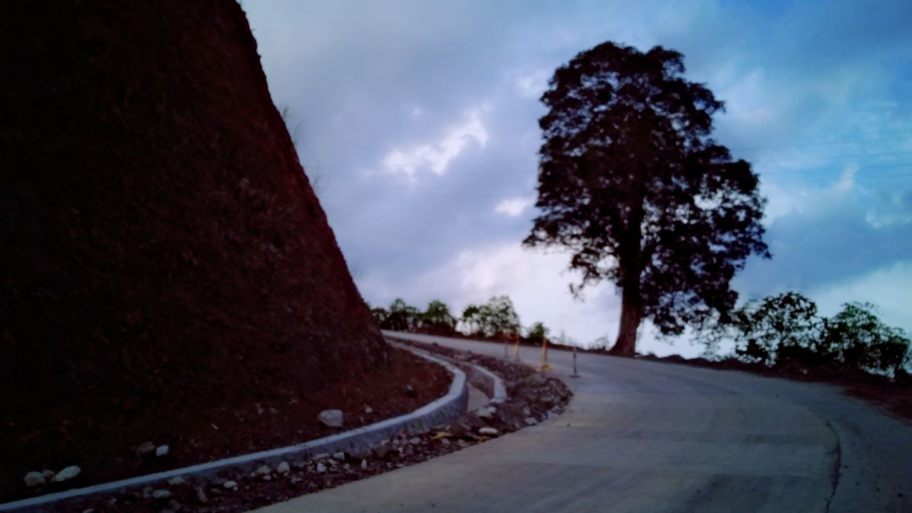 tree, plant, sky, cloud - sky, direction, transportation, no people, the way forward, nature, road, outdoors, day, diminishing perspective, tranquility, beauty in nature, tranquil scene, curve, empty road, scenics - nature, non-urban scene, long