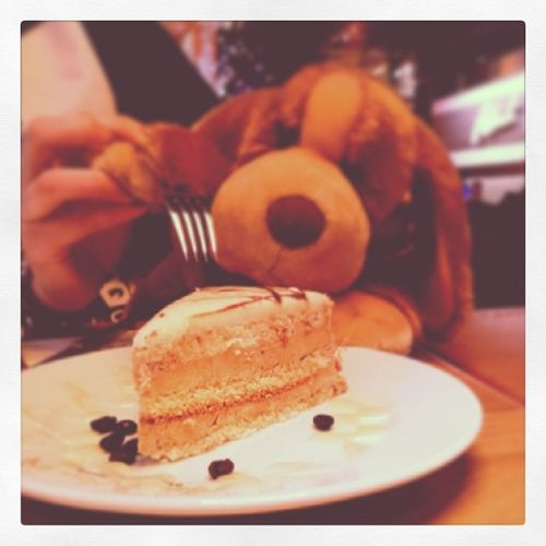 Oh boy! I got a free piece of Cake for Desert at Robertscafe - and it was Yummy . treat Puppy sweets love nom pie sugar food MarkAntalya