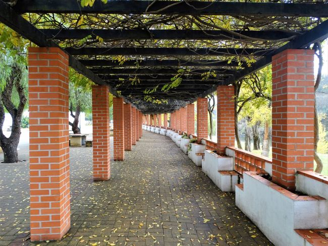 Absence Architectural Column Architecture Brick Building Built Structure Colonnade Connection Day Diminishing Perspective Direction Footpath In A Row Nature No People Outdoors Park Plant The Way Forward Tree