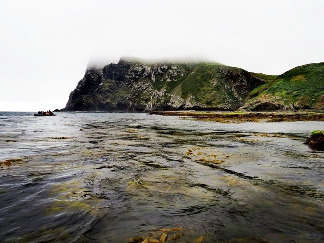 Mangere island Sub Antarctics Chatham Islands Mangere Island Sea Beach Rock - Object Nature Tranquility Outdoors Beauty In Nature Landscape