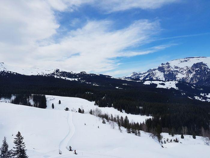From Jungfrau