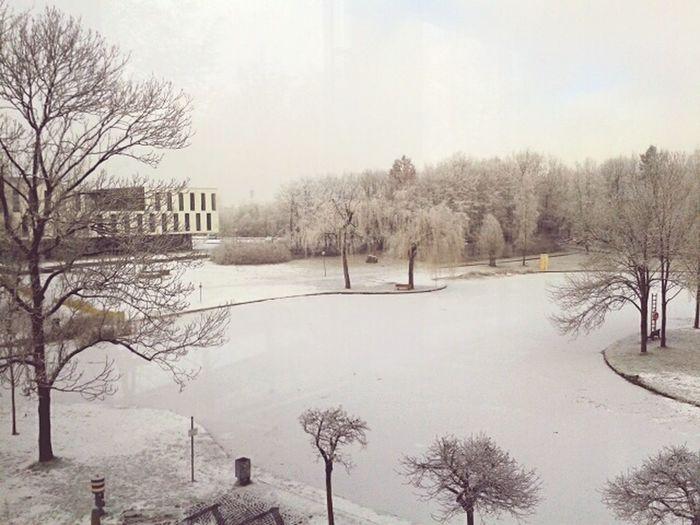 Augsburg Universität Augsburg Campus Winter Wonderland